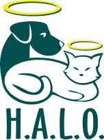 Homeless Animals' Lifeline Organization (HALO)
